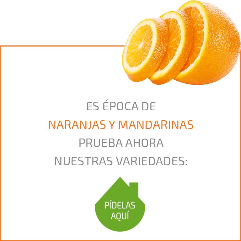Temporada Naranjas Mandarinas